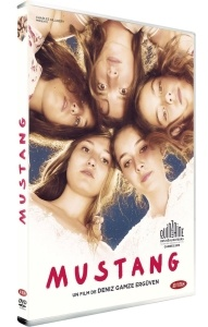 Mustang-Dvd