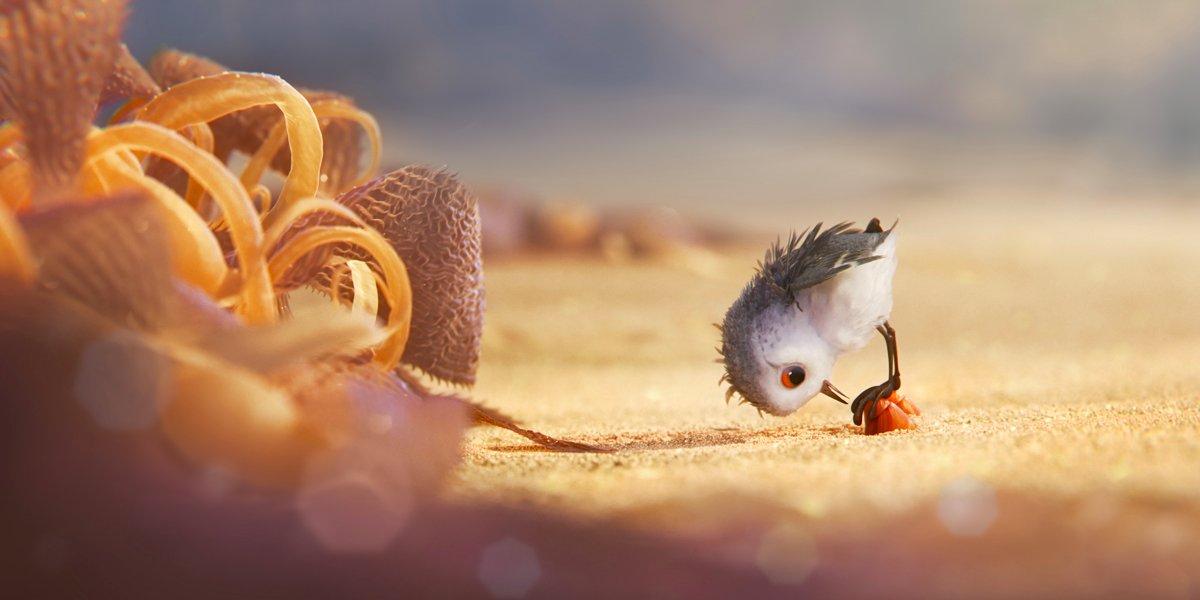 Piper-Short-Film-Disney-Pixar-Review